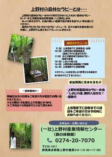 2019年森林セラピーチラシ-2.jpg